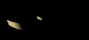Atlas SN Leasing